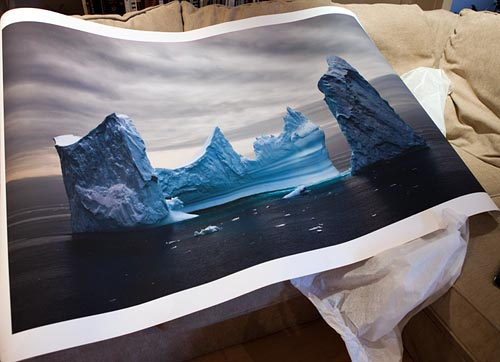 _MG_6521_iceberg_print_500.jpg