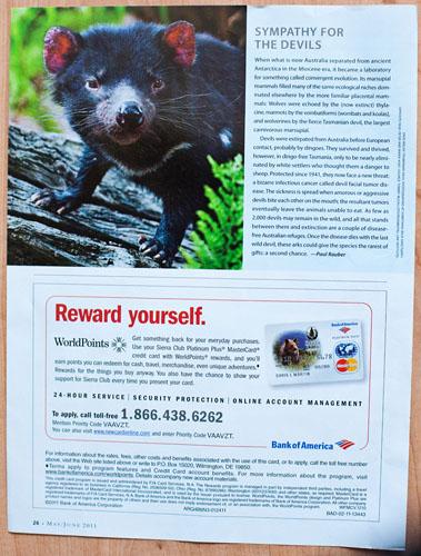 Tasmanian Devils, Sierra Club