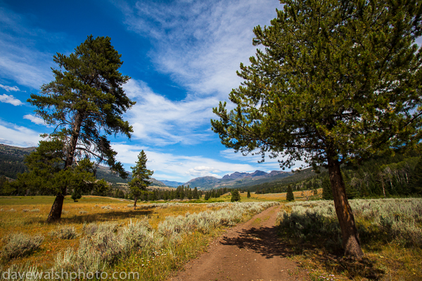Slough Creek Trail, Yellowstone National Park,
